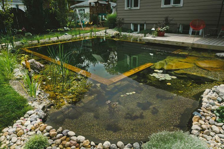 piscina natural cuadrada