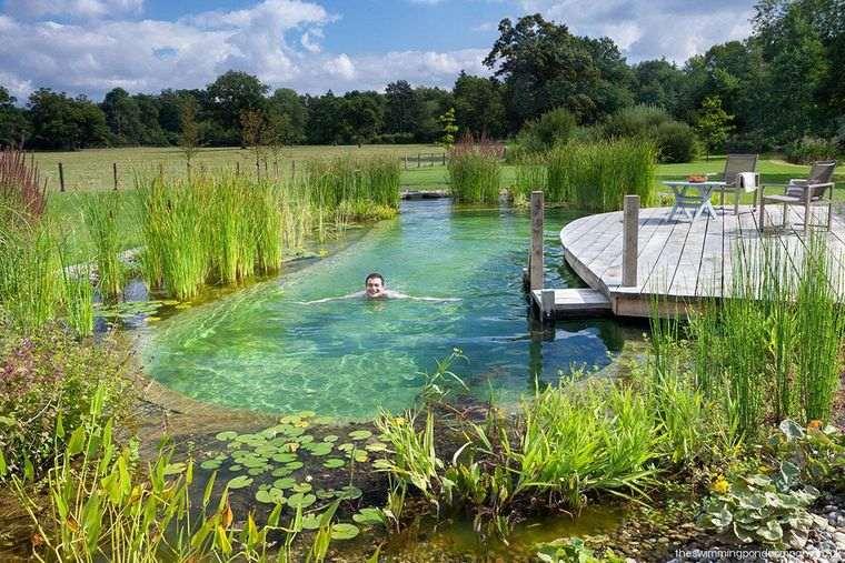 piscina natural madera