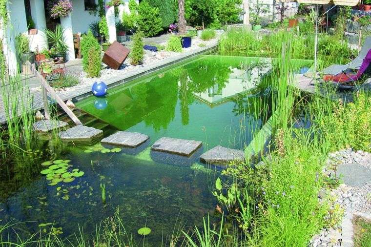 piscina natural organica