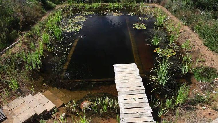 piscina natural oscura