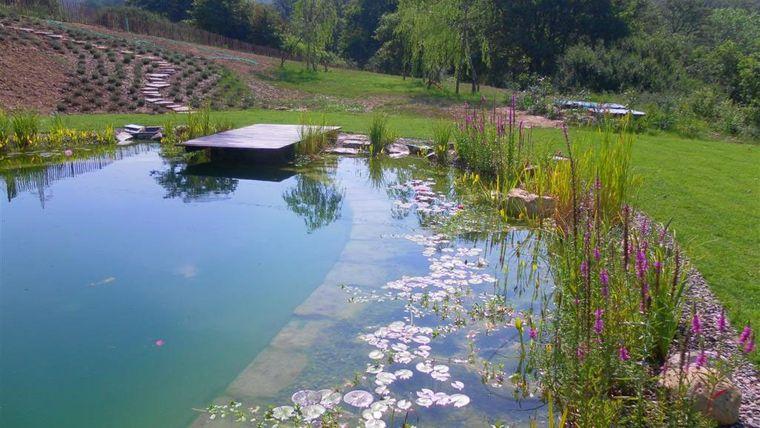 piscina natural para nadar