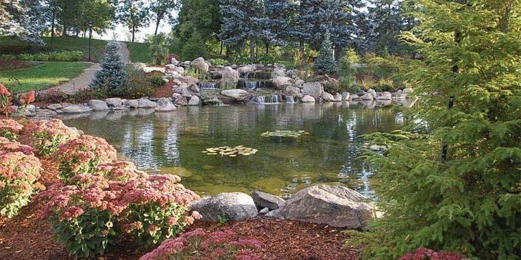 piscina natural patio