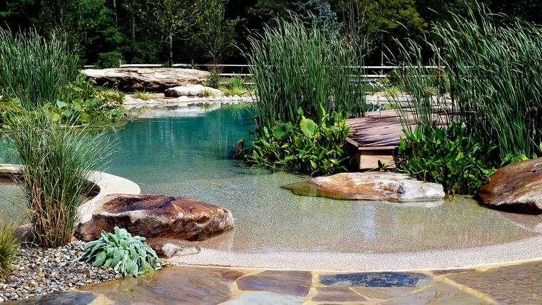 piscina natural plantas acuaticas