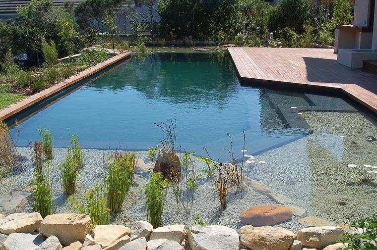 piscina natural plantas rocas
