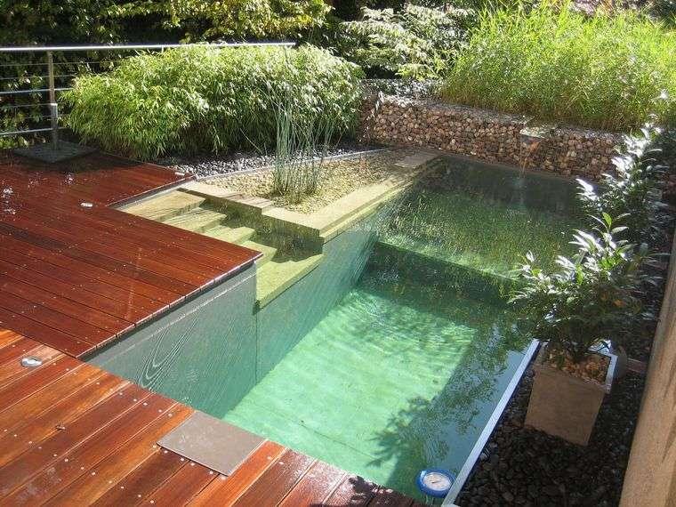 piscina natural sencilla