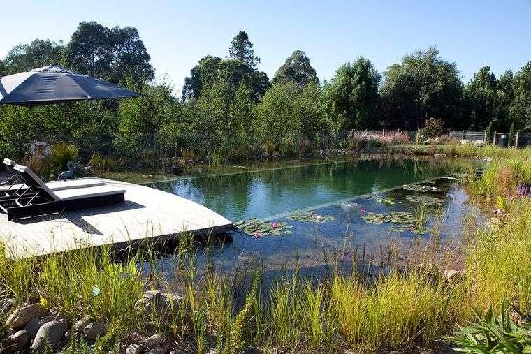 piscina natural tumbonas