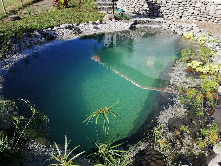 piscina natural vida