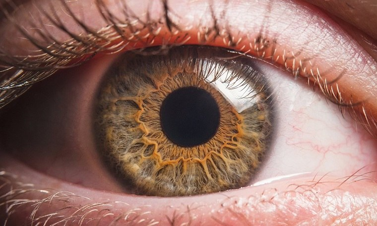 Insuficiencia cardíaca – el tamaño de la pupila predice problemas cardíacos