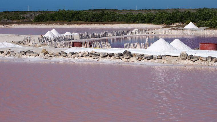 sal marina extraccion