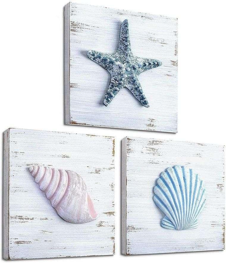 conchas marinas cuadros