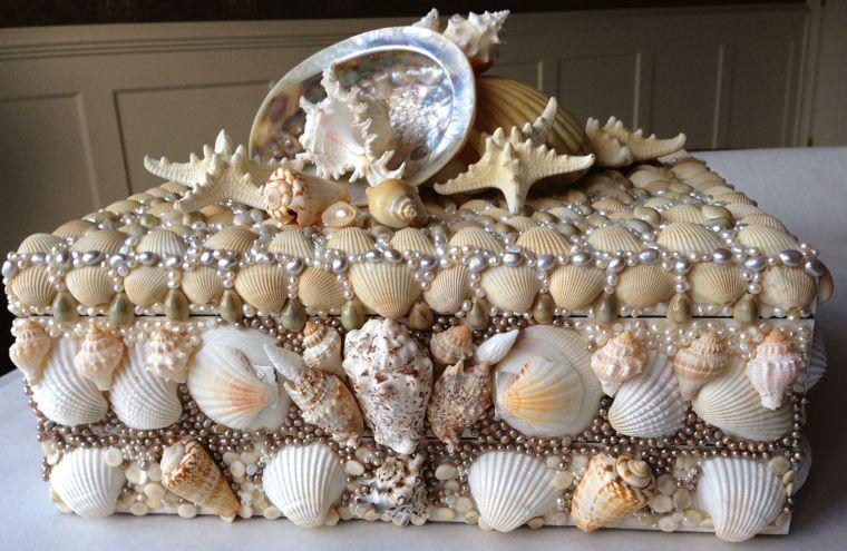 conchas marinas en cofre