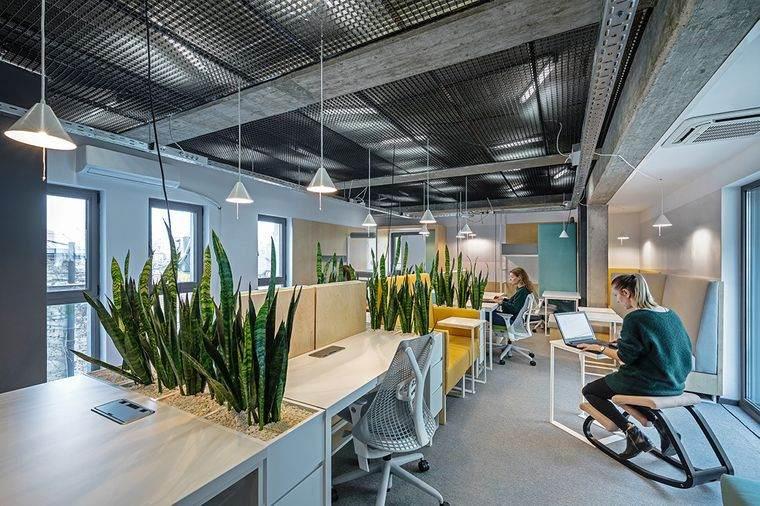 diseño de interiores con plantas