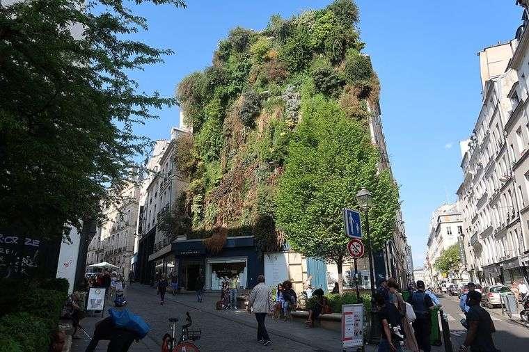edificios ecológicos aboukir oasis