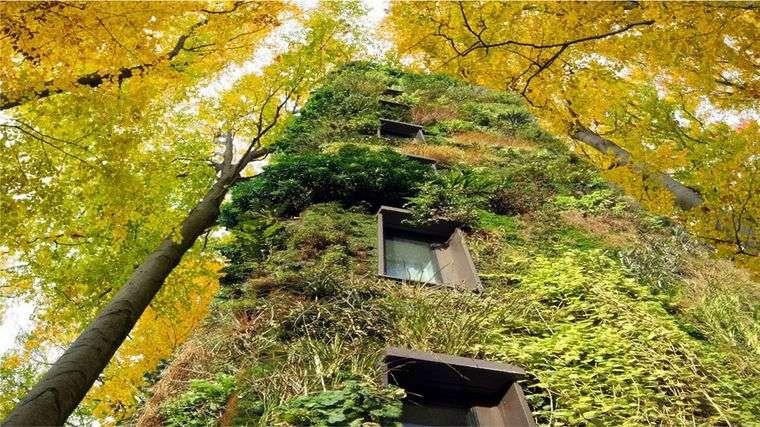 edificios ecológicos ideas