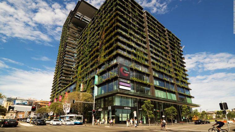 edificios ecológicos mejora ambiental