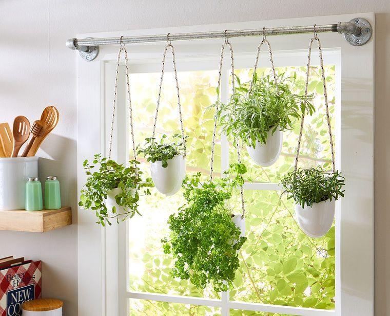 huerto ecológico cocina