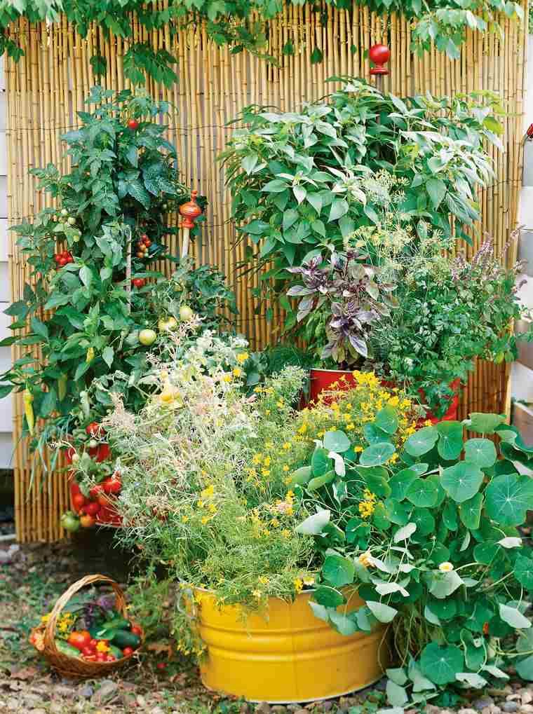 huerto ecológico en casa