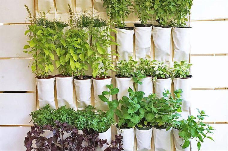 huerto ecológico original