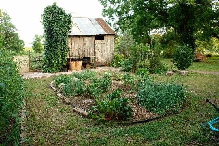 huerto ecológico patio trasero