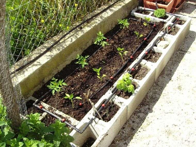 huerto ecológico patio