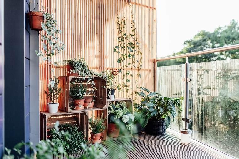 plantas-flores-balcon-opciones