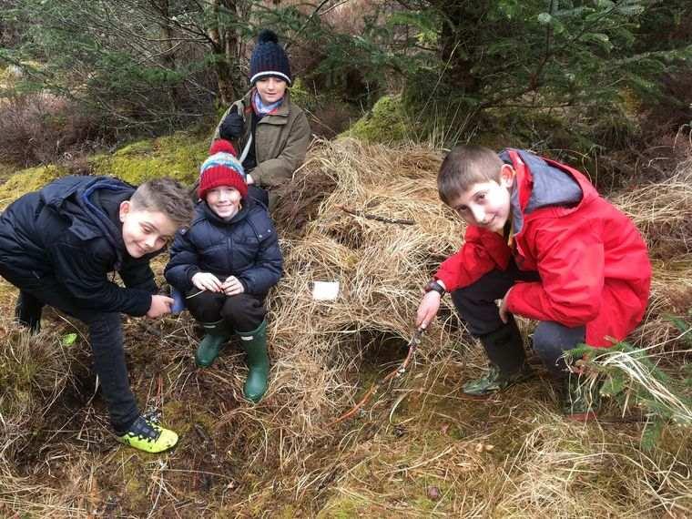 actividades de aventura bosque