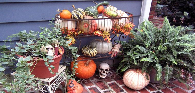 colores alegres decoracion patio halloween