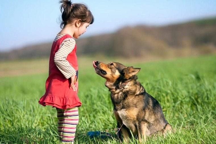 nina-perro-ideas-chica