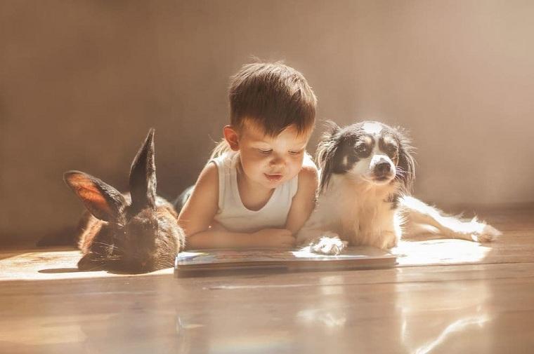 ninos-pequenos-mascotas-ideas