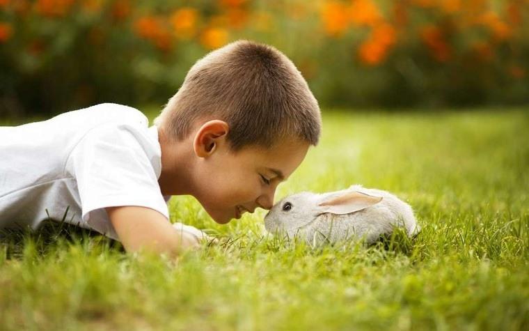 Niños y mascotas -chico-conejo
