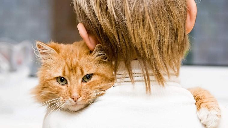 Niños y mascotas -gato-estilo