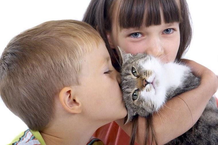 Niños y mascotas-gato-ideas