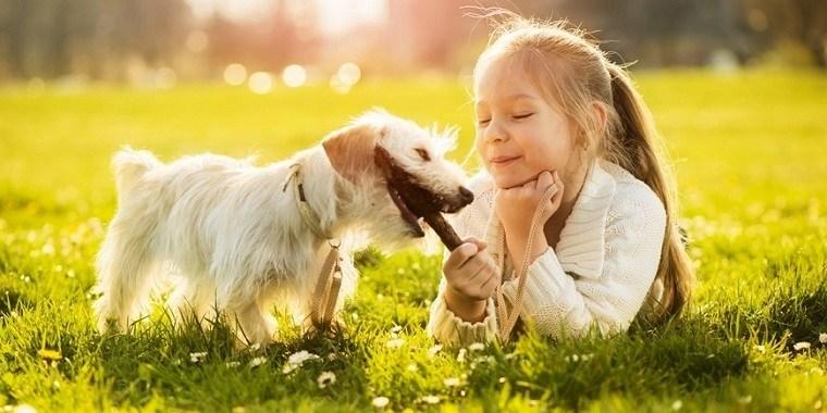 ninos-y-mascotas -opciones-vivir