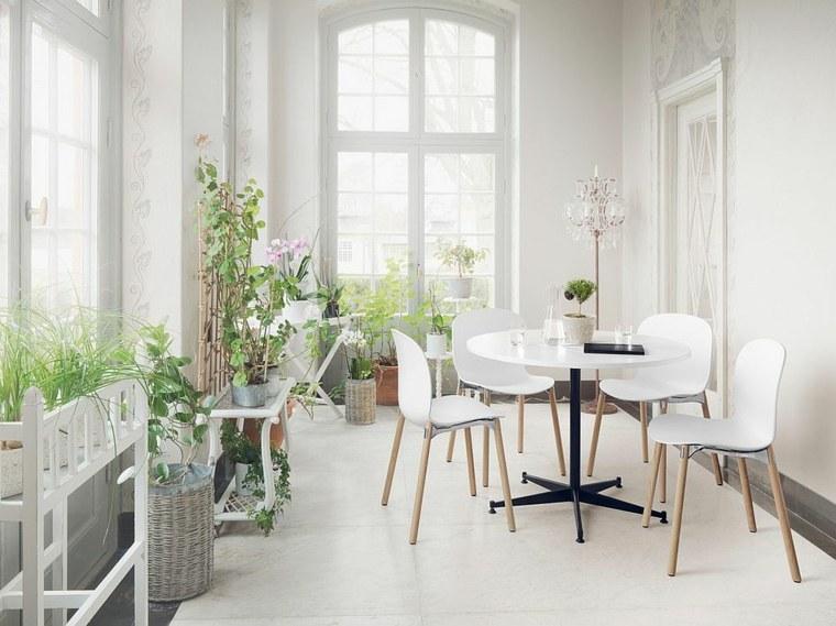 plantas-terraza-cristal
