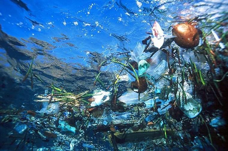 plástico-basura-oceano-cientificos