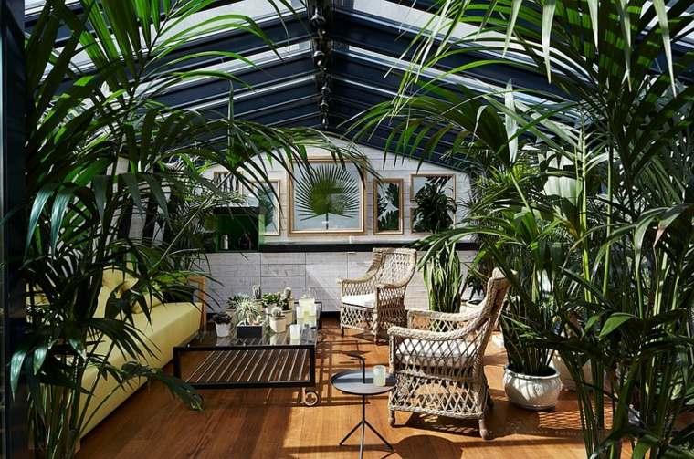 terraza-plantas-techo-cristal