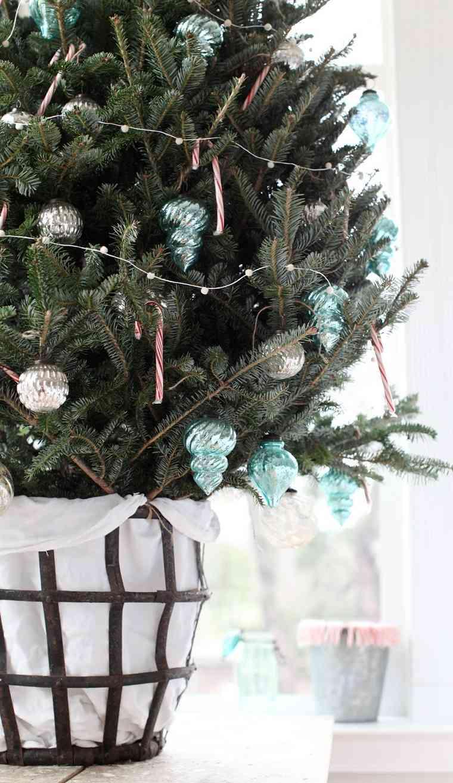 arbol-navideno-pequeno-maceta