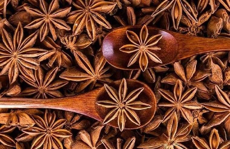 especias chinas anis estrellado