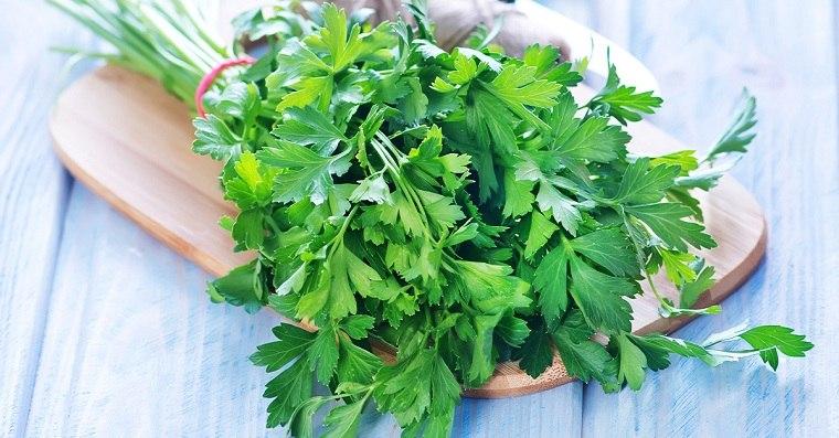 alimentos-verdes-beneficios-perejil