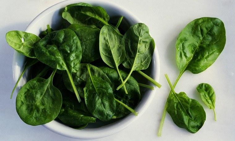 falta-de-hierro-obtener-alimentos-espinacas