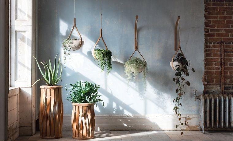 japandi plantas en el interior