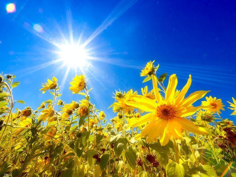 rayos ultravioleta verano