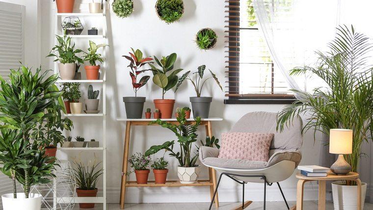decorar-casa-opciones-2021