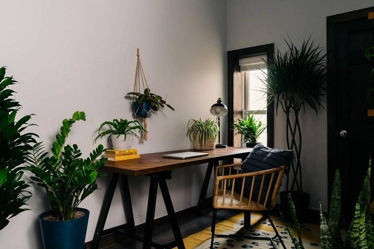 home-office-ideas-plantas