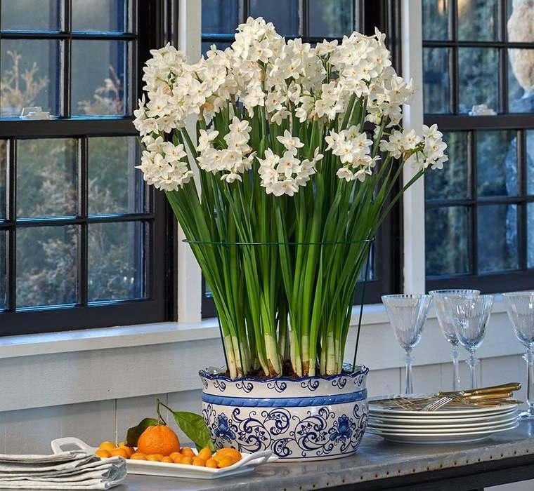 ideas para decorar con narcisos blancos