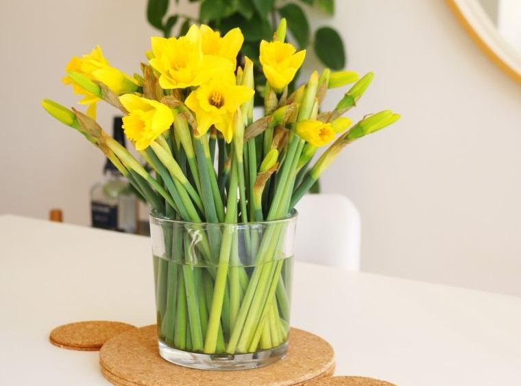 ideas para decorar flores de narcisos