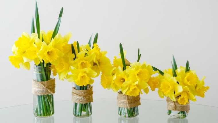 ideas para decorar interiores con narcisos