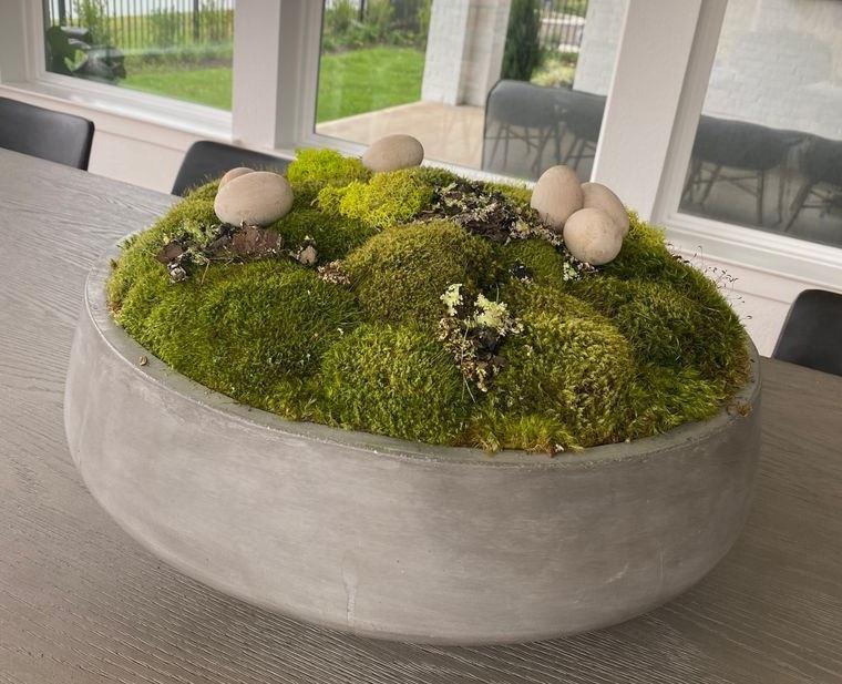 musgo para decoracion hogar