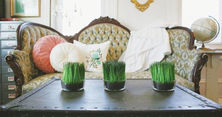 pasto de trigo decoracion interior hogar