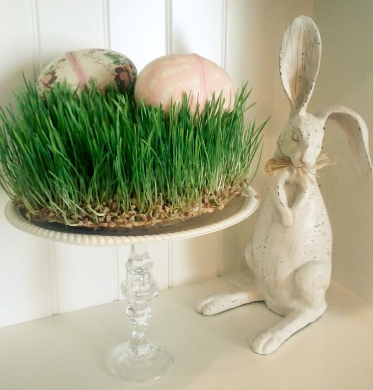pasto de trigo decoracion pascua